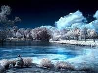 Paisagem de inverno - Árvores de lagoa de paisagem de inverno