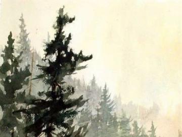 Bear in the woods - Nature, art, bear