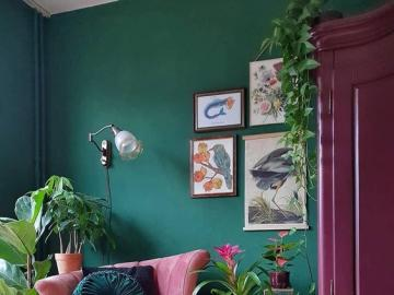 Pink interior - Interior design, living room