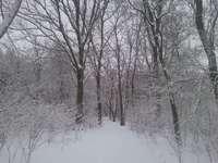 Δεν ήταν τόσο χειμώνας εδώ και πολύ καιρό - Είναι ωραίο να παρακολουθείτε τον πραγματικό χειμώνα,