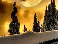 Pleine lune. - Paysage. Pleine lune.