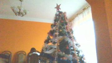 Christmas tree'' - Has grandmothers and handmade laurels