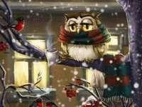 πουλιά κουκουβάγια χειμώνα - πουλιά κουκουβάγια χειμώνα