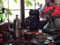 Antiguidade, Câmera, Louça, Café, Flores