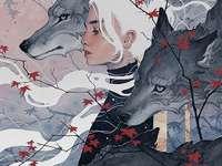 Bílé vlasy s vlkem