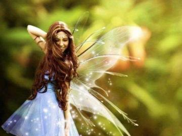 Elf fairy butterfly - Elf fairy butterfly