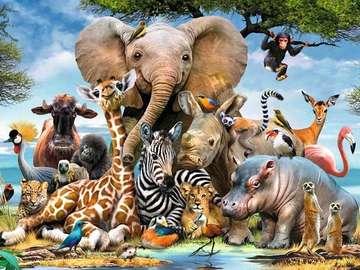 Zwierzęca różnorodność. - Zwierzęca różnorodność. Dzikie zwierzęta