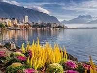 Elveția. - Montreux. Montreux la Lacul Geneva. Orașul Montreux în Elveția.