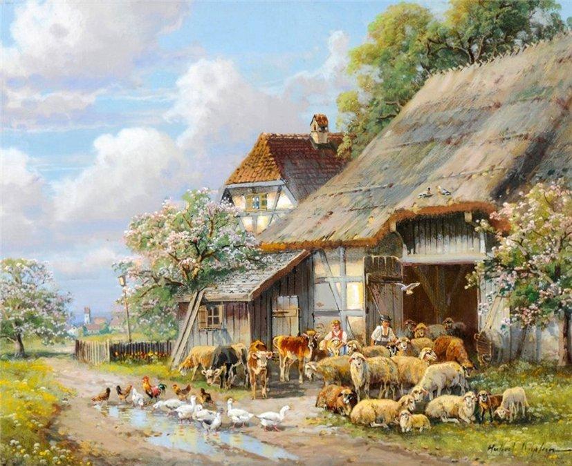 Vidéki Farm - Házi szárnyas a kifutón (10×10)