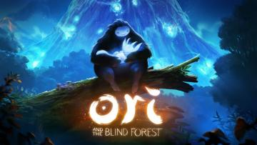 Ori Main screen - The picture is from the game Ori which depicts the main character