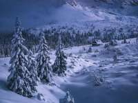 Winter in the Tatras. - Landscape. Winter in the Tatras.