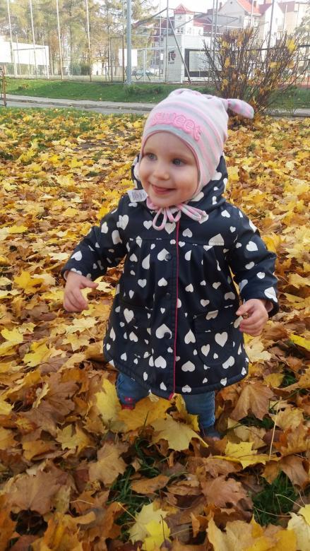 Ala in autumn online puzzle