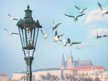 The area around the Charles Bridge in Prague