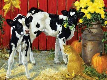 Calves animals flowers - Animals calves with flowers