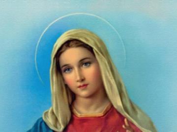 Immaculate Conception - This is a picture of the Immaculate Conception