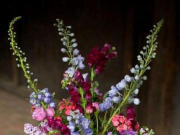 Kompozycja kwiatowa - Piękna kompozycja kwiatowa