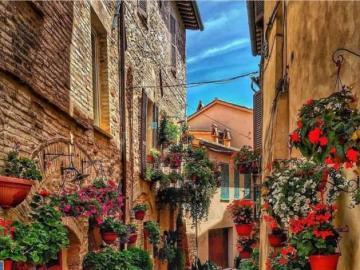 Kwiatowa uliczka-Spella Włochy - Kwiatowa uliczka-Spella Włochy