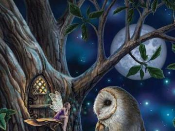 Fairy owl on a tree - Fairy owl on the tree
