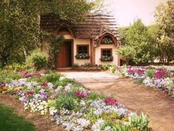 Cottage garden nature - Cottage garden nature