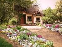 Cottage garden nature