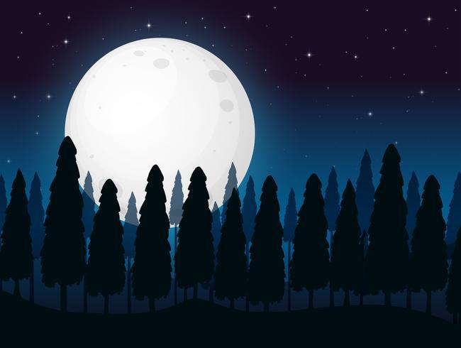 imagen de noche