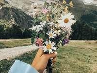 Csokor vadvirágok