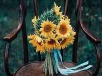 Floarea-soarelui galben.