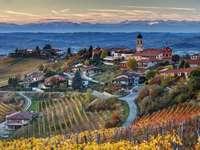 Italie - Gyönyörű olasz völgy. A Le Langhe jellegzetes hegy Piemontban található. Ez egy olyan terület