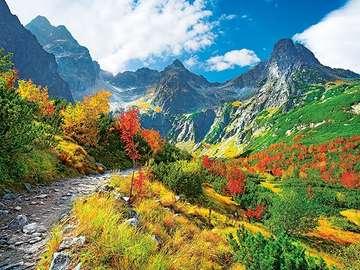 Nature des Tatras. - Tatra nature ..
