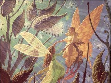 Feen Schmetterlinge sagenhaft - Feen Schmetterlinge sagenhaft