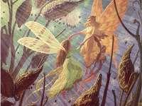 Πεταλούδες νεράιδες υπέροχα - Πεταλούδες νεράιδες υπέροχα