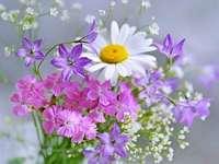 Květiny, malé květy - Květiny