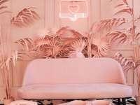 Ένα ροζ δωμάτιο