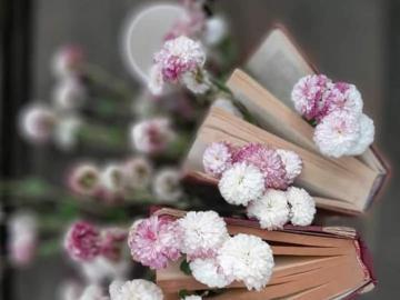 Blumen, kleine Blumen - Blumen, kleine Blumen