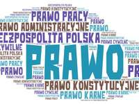 Pobočky práva v Polsku