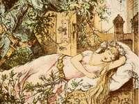 Šípková Růženka a princ - Šípková Růženka a princ