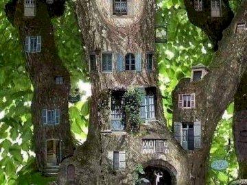 Non una visione quotidiana: l'albero della vita - La vista non è di tutti i giorni - l'albero della vita