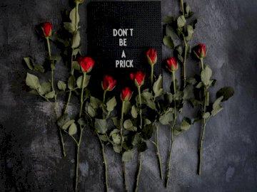 Nie bądź niemiły - Czerwone róże na czarnej tkaninie. New Forest National Park, Wielka Brytania