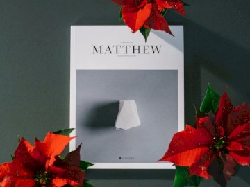 Book of Matthew with Red - Matthew book near red poinsettia flowers. Los Angeles