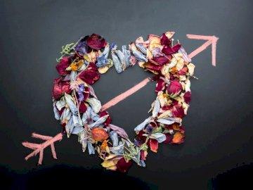 Een droge liefde - Ikebana in de vorm van een hart. Riverton, Utah