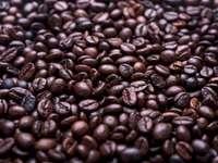 Пресни кафени зърна