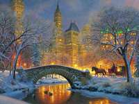 Central Park in de winter. - Landschap puzzel.