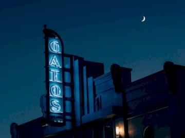 Gatos, películas - Foto de la señalización de luz de neón de Gatos. San Francisco, CA