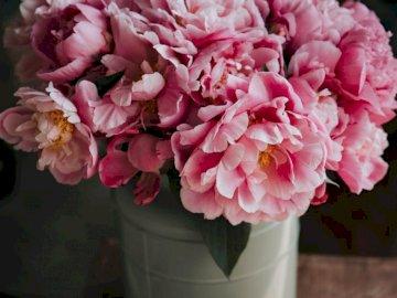 Flores cor de rosa em um vaso - Composição de flor de pétala de rosa. Romênia