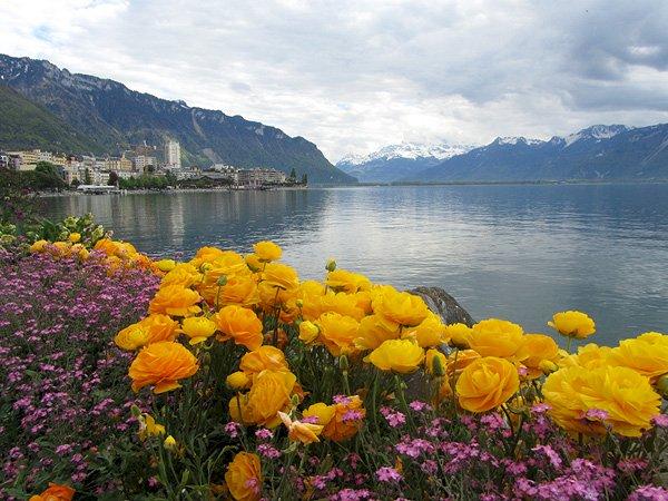 Suiza. Montreux - Rompecabezas de paisaje (10×10)