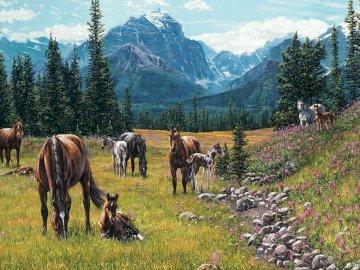 Landschaft mit Ponys. - Landschaftspuzzle.