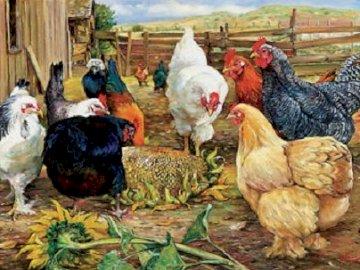 Domestic fowl. - Animals. Jigsaw puzzle.