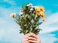Alegria, flores e o sol