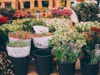 Kbelíky s květinovými trhy