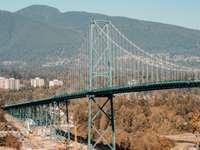 Ponte sospeso a Vancouver